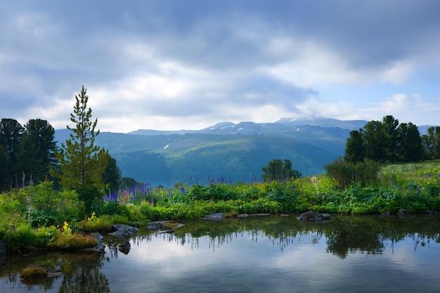 Düstere landschaft des bergsees