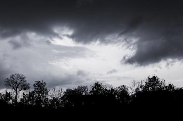 Dunkle gewitterwolken am dramatischen himmel während eines sturms. silhouetten von bäumen gegen den eines gewitterhimmels