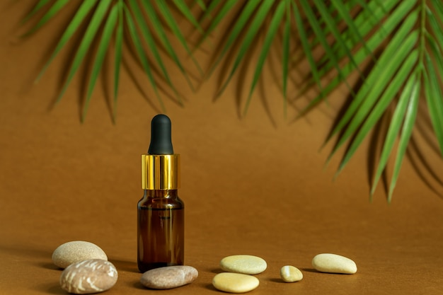 Dunkle glasflasche mit pipette oder tröpfchen. mock up essentielle flüssigkeit. trendiger hintergrund tropische blätter und seesteine.