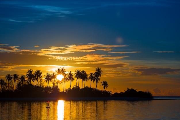 Dunkle schattenbilder von palmen und von erstaunlichem bewölktem himmel bei sonnenuntergang