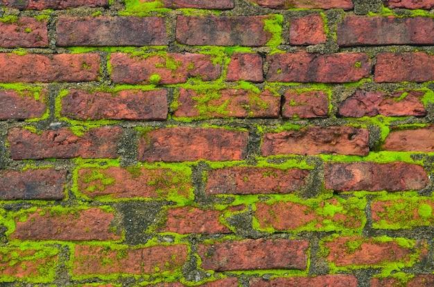 Dunkler groll backsteinmauer hintergrund