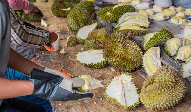 Durian mit dem messer schälen. thailändische königsfrucht