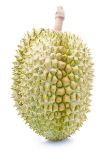 Durianfrucht auf weiß