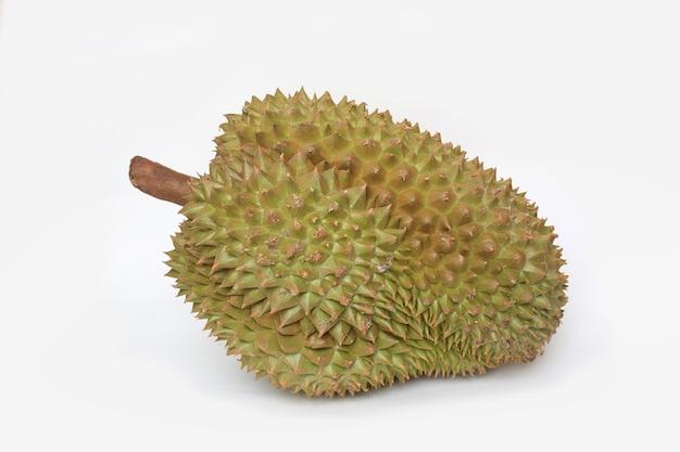 Durianfrucht lokalisiert auf weißem hintergrund. könig der früchte in südostasien