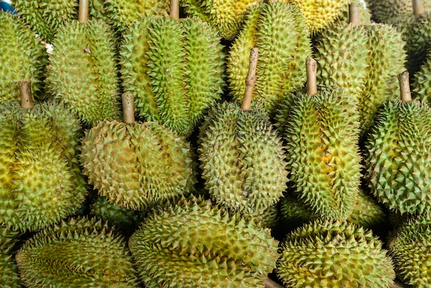 Durianfrucht vereinbaren zusammen für verkauf, um in thailand zu vermarkten.