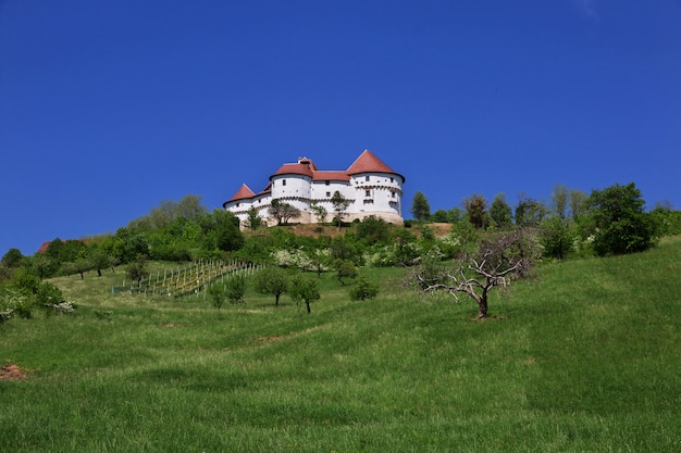 Dvor veliki tabor ist das schloss in kroatien