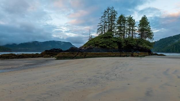 Ebbe sandstrand mit bäumen auf der insel in san josef bucht auf vancouver island, british columbia, kanada.