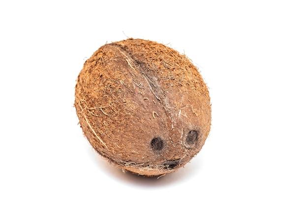 Echte kokosnuss isoliert