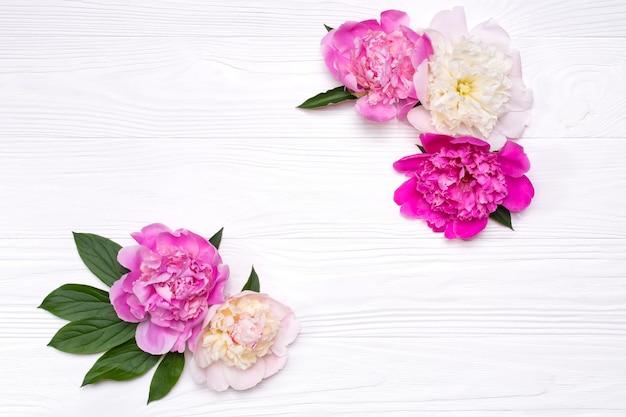 Ecken der pfingstrosenblumen auf einem weißen hölzernen hintergrund