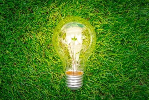 Eco-konzept - glühbirne im gras wachsen