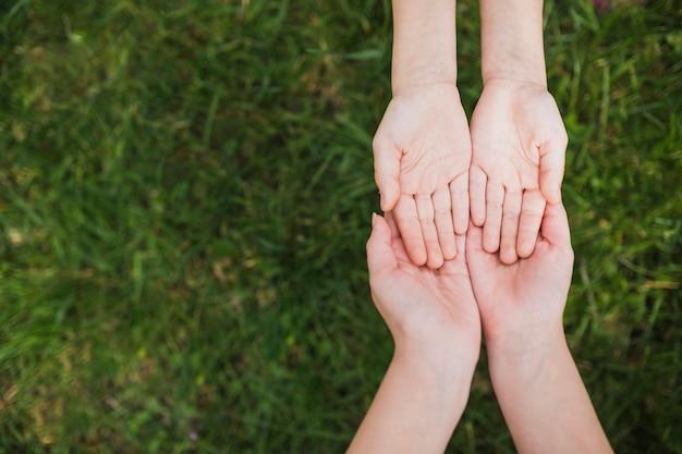Eco-konzept mit zwei paaren händen