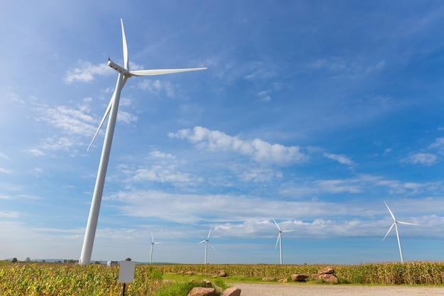 Eco-power, windkraftanlage auf dem feld des grünen grases und des mais über dem blauen bewölkten himmel