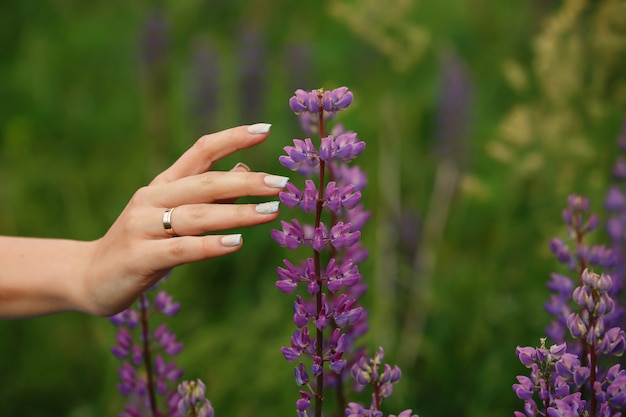 Ehe. brauthand mit ehering oder verlobungsring und schöner maniküre im lavendelfeld