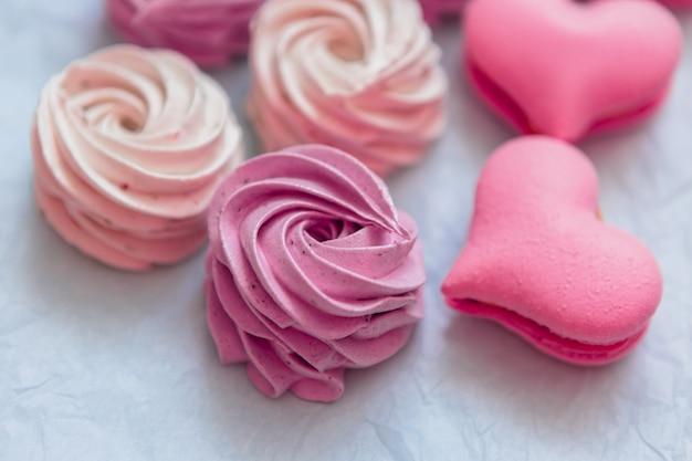 Eibisch auf rosa, copyspace