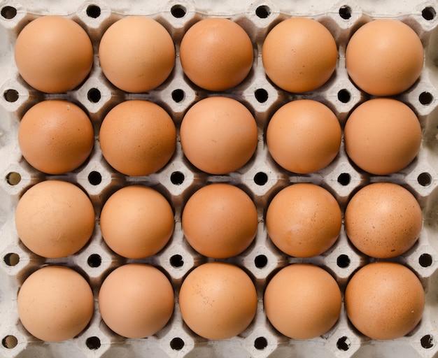 Eier auf karton