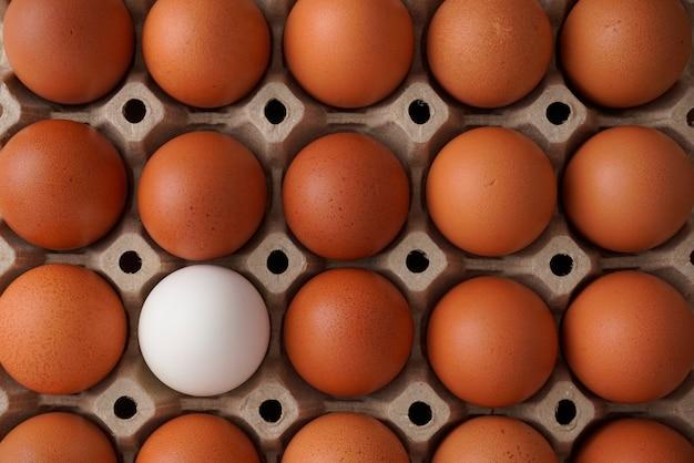 Eier im karton unterschiedliches weißes ei unter braunem konzept der auswahl der lebensmittelernährung