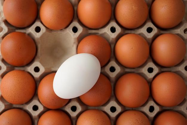 Eier im karton weißes ei unter braunem lebensmittelernährungsproteinunterschied minimalismuskonzept