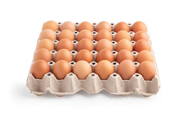 Eier im kartonpapier isoliert auf der weißen oberfläche mit schnittpfaden