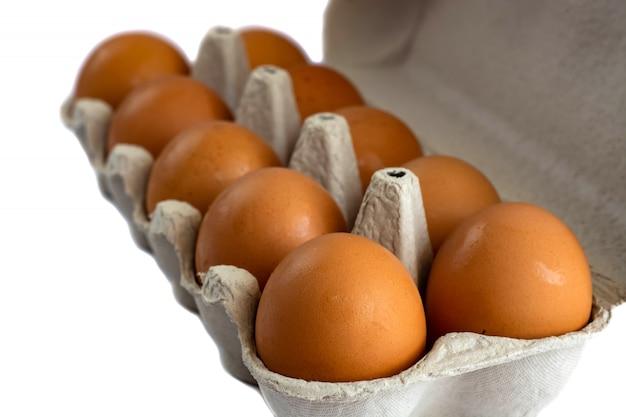 Eier im papiertellersegment getrennt auf weiß