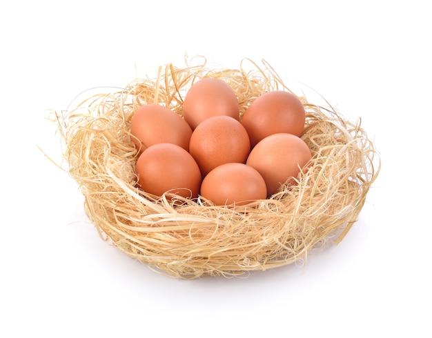 Eier in einem nest auf weißem hintergrund