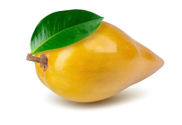 Eierfrucht, canistel, gelber sapote lokalisiert auf weiß