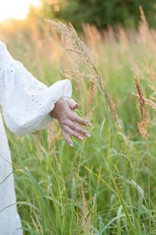 Ein agronomen des jungen mädchens berührt mit ihrer hand goldene ährchen von reifem weizennahaufnahme.
