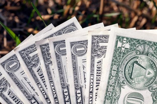 Ein amerikanischer dollar in einem landwirtschaftlichen bereich, nahaufnahme