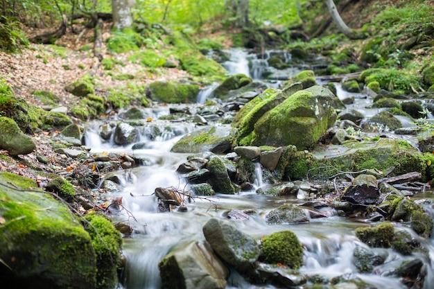 Ein bach in einem bergwald fließt durch steinkaskaden.