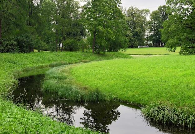 Ein bach in einem sommerpark. malerische grüne ufer bedeckt mit gras und bäumen