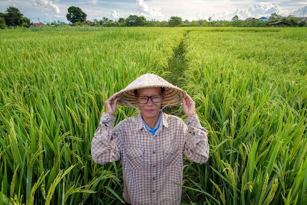 Ein bauer, der einen vietnamesischen hut trägt