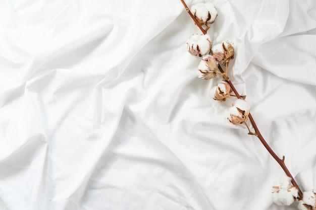 Ein baumwollzweig liegt auf einem weißen baumwolltuch. herbst gemütliche wohnung. minimalismus. baumwollblume.
