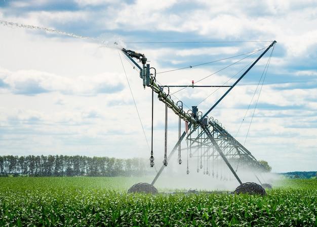 Ein bewässerungszapfen, der ein feld wässert