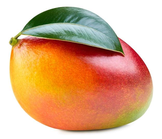 Ein blatt mango clipping path. mangoblätter lokalisiert auf weißem hintergrund