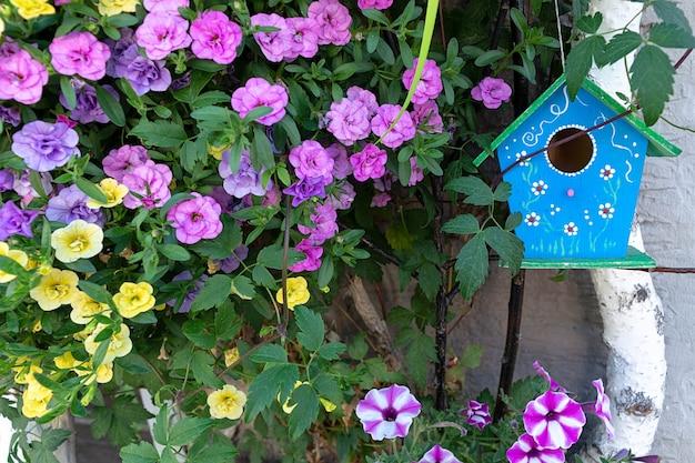 Ein blaues vogelhäuschen hängt an einer birke, umgeben von petunienblumen.