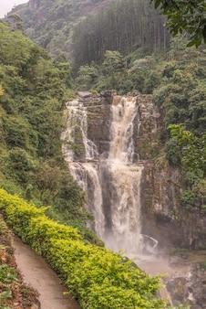Ein blick auf den wunderschönen wasserfall im faszinierenden wald von shri-lanka.
