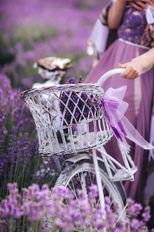 Ein blumenstrauß des lavendels in einem korb auf einem fahrrad auf einem lavendelgebiet ein mädchen, das ein velispette ohne ein gesicht sammelt lavendel im sommer hält
