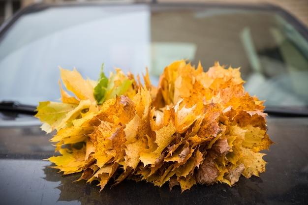 Ein bündel orangefarbener ahornblätter im herbst auf der motorhaube des autos.