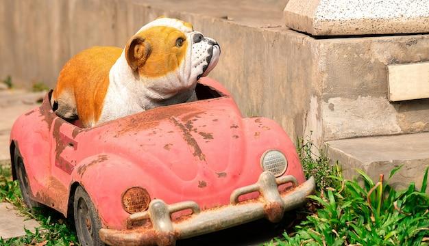 Ein bulldoggenmodell und ein auto