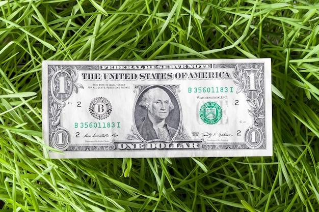 Ein echter amerikanischer dollar