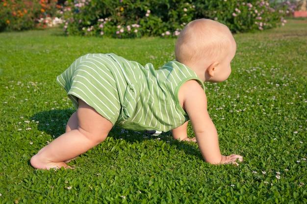 Ein einjähriger junge kriecht auf dem grünen rasen im hinterhof des hauses