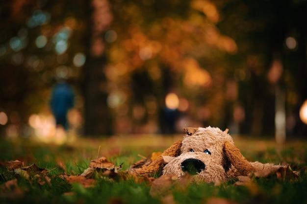 Ein einsamer spielzeughund in einer schönen herbstlandschaft mit gelben bäumen