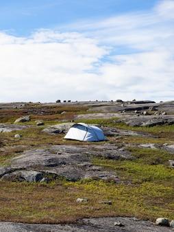 Ein einzelnes weißes zelt zwischen den mit moosen bedeckten steinen und felsen im polarkreis