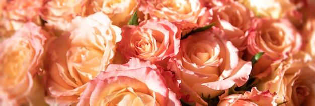 Ein festlicher strauß orangefarbener rosen im sonnenlicht. blumenhintergrund