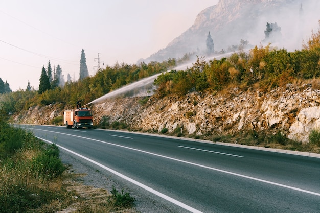 Ein feuerwehrauto auf der straße löscht ein feuer im wald
