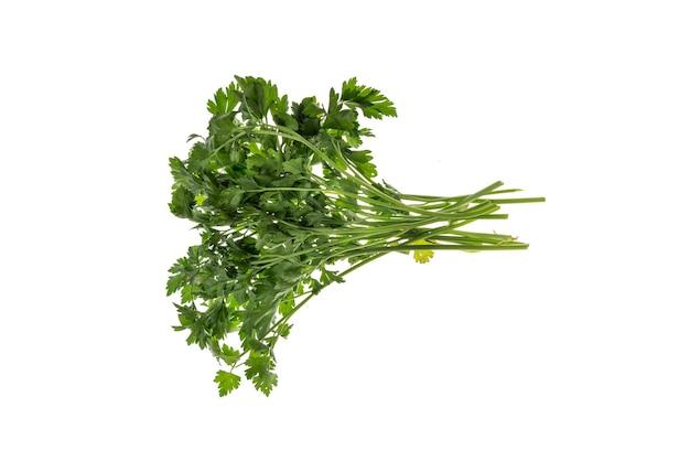 Ein frischer bund petersilie grün auf weißem hintergrund