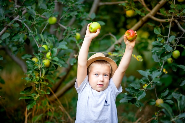 Ein fünfjähriger junge steht in einem garten mit apfelbäumen und hält die hände hoch
