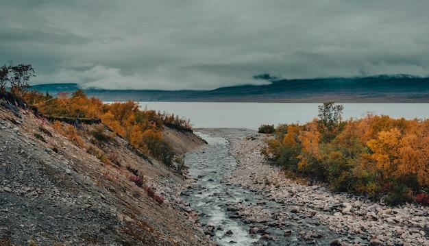 Ein gebirgsfluss fließt im goldenen herbst in einen tornetrask-see im nebligen abisko-nationalpark im polaren schweden