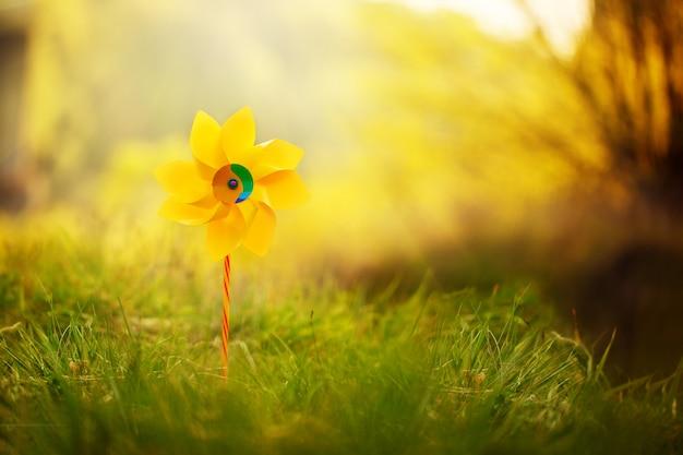 Ein gelbes feuerrad gegen naturhintergrund am sonnigen sommertag