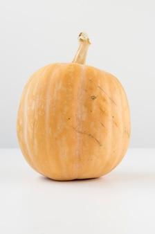 Ein großer echter kürbis, der zu halloween verwendet wird