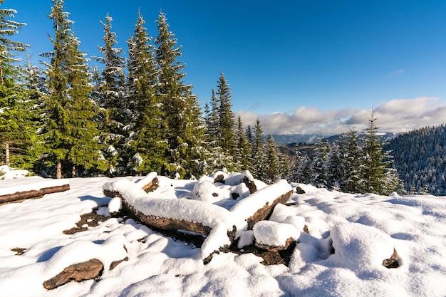 Ein großer schneebedeckter lagerfeuerplatz zum wandern in den karpaten i strahlend kalte sonne
